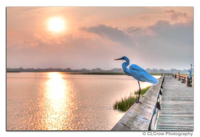 Marshwalk at Sunrise